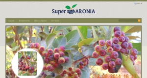 Website design superaronia.gr