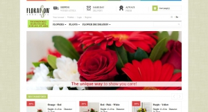 website for online flower e-shop: baby cakes, floral arrangements, flowers - plants, bouquets, bouquets