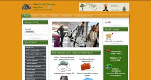 e-shop website for bags and suitcases