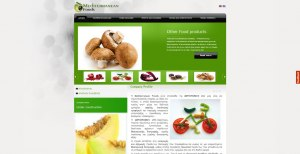 website creation for new and innovative international trader of high quality food and service support